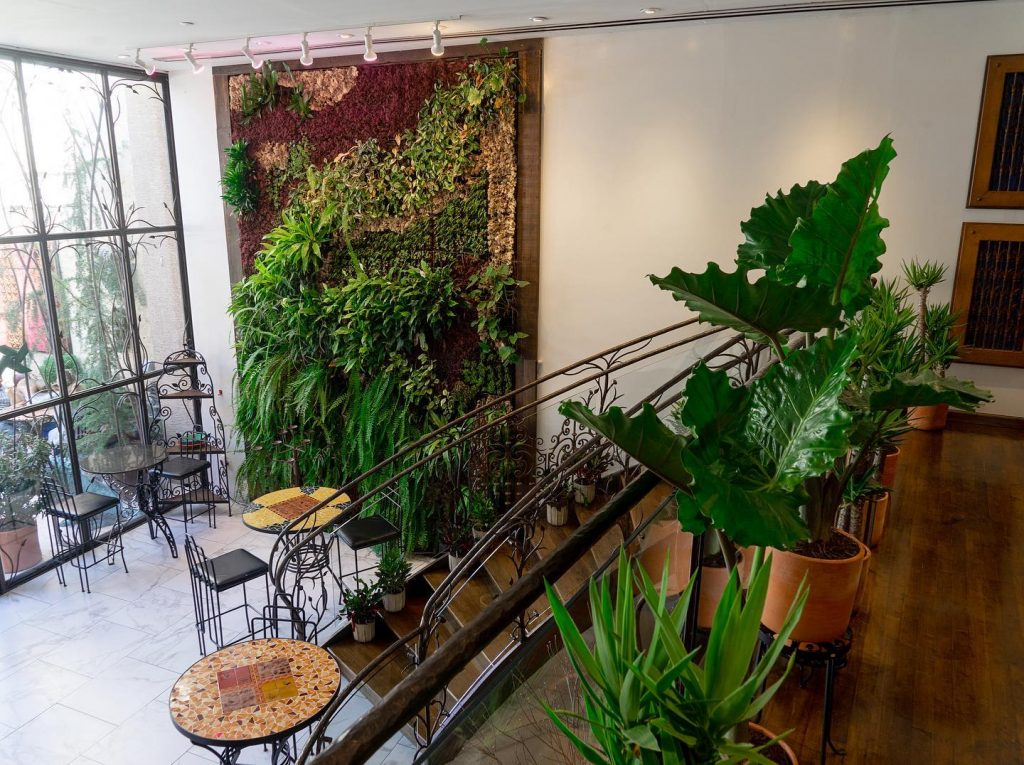 This New Café In Manayunk Doubles As An Art Gallery & It's An Absolute Urban Oasis