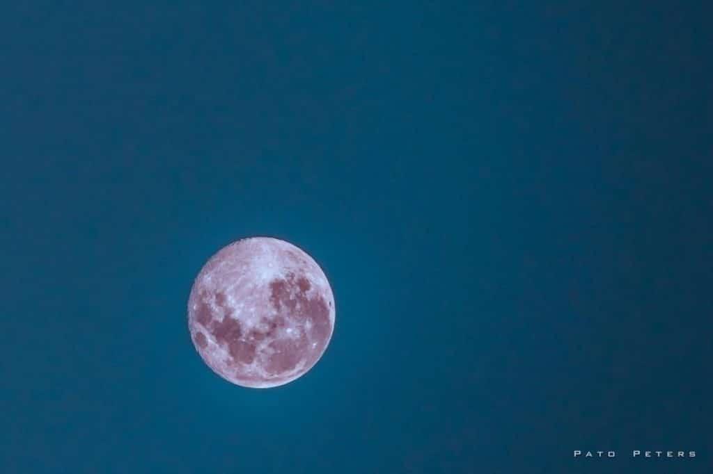 "Don't Miss This Stunning ""Super Pink Moon"" On Monday Night"