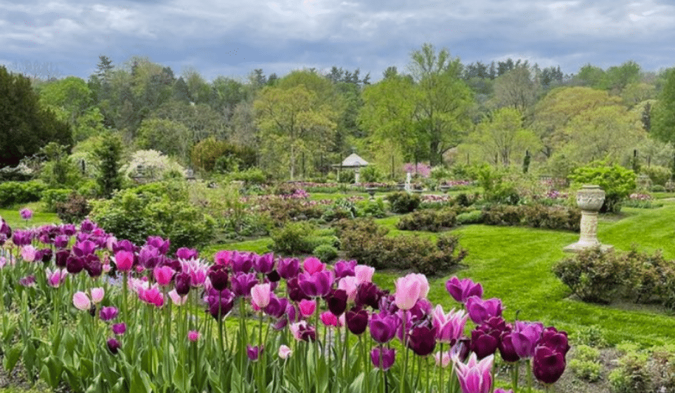 7 Blooming Arboretums And Botanical Gardens To Visit In Philly