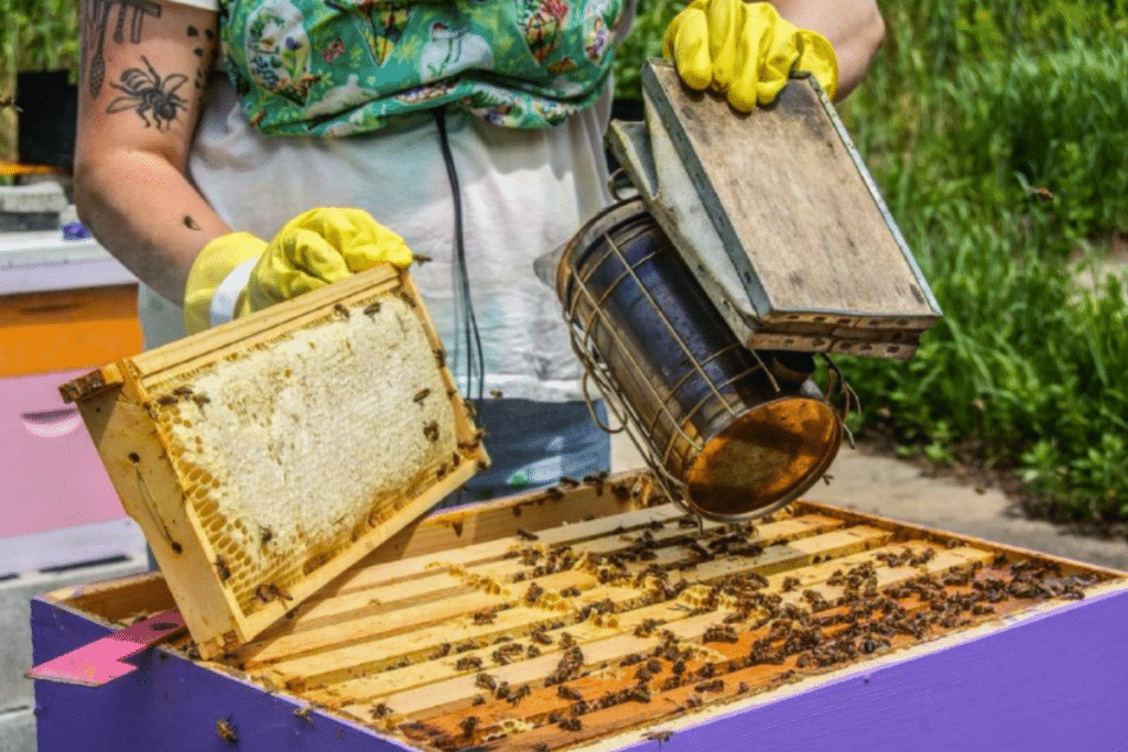 This Beehive Experience Empowers People Who Struggle With Mental Health Issues • Half Mad Honey