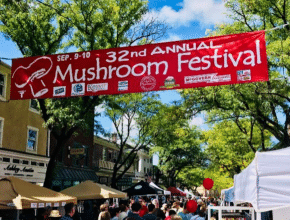 A Mushroom Festival Is Coming To Kennett Square This Weekend